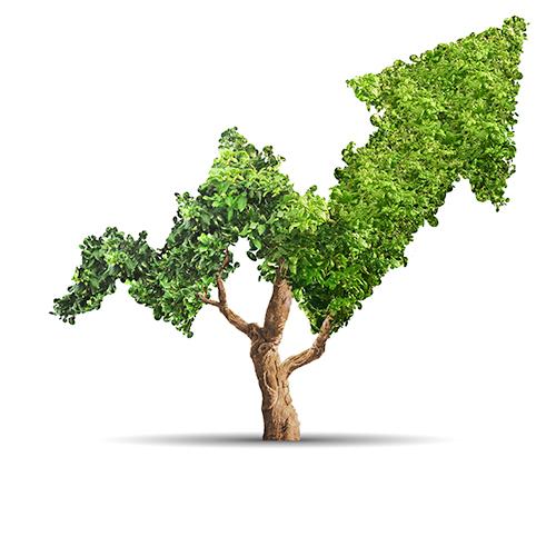 plan - Income Tax Return filing & TDS Return Filing Services